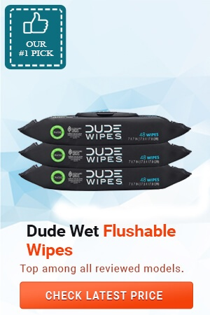 Best Flushable Wipes