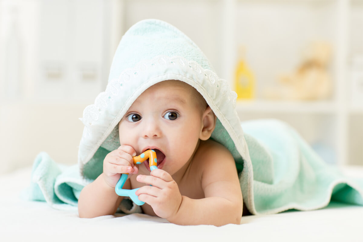 Best Baby Teethers 2019: Chemical Free Teether Reviews & Buying Guide