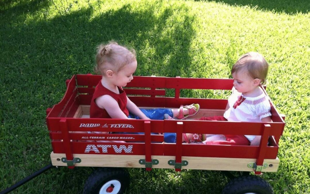 Best Kids Wagon of 2019 – Top Picks and Tested by Experts!
