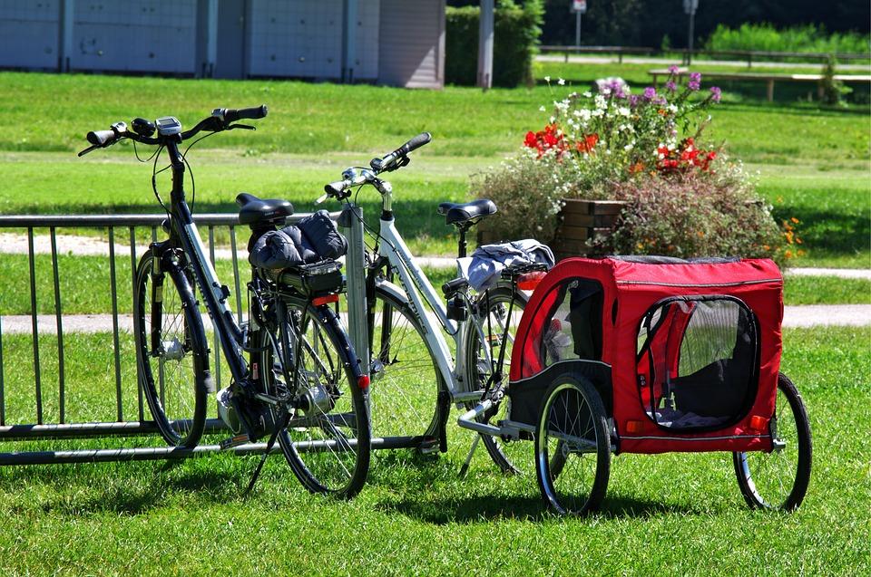 Bike Trailer Or Bike Seat
