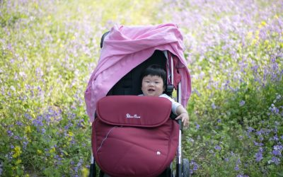How To Choose The Right Travel Stroller