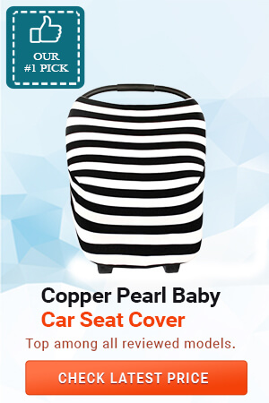 Best Baby Car Seat Cover