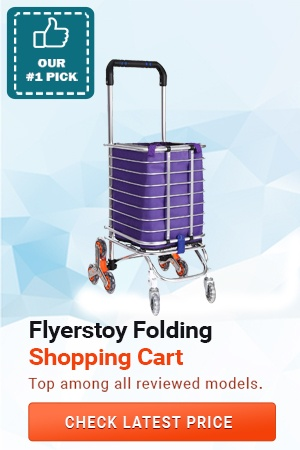 Flyerstoy Folding Shopping Cart