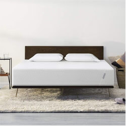 TUFT & NEEDLE Queen Mattress