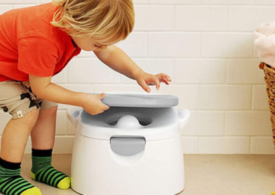 best potty seat for training, best potty training seat reviews